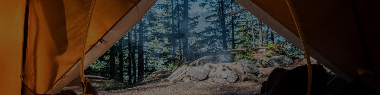 GOGO CAMPの特徴